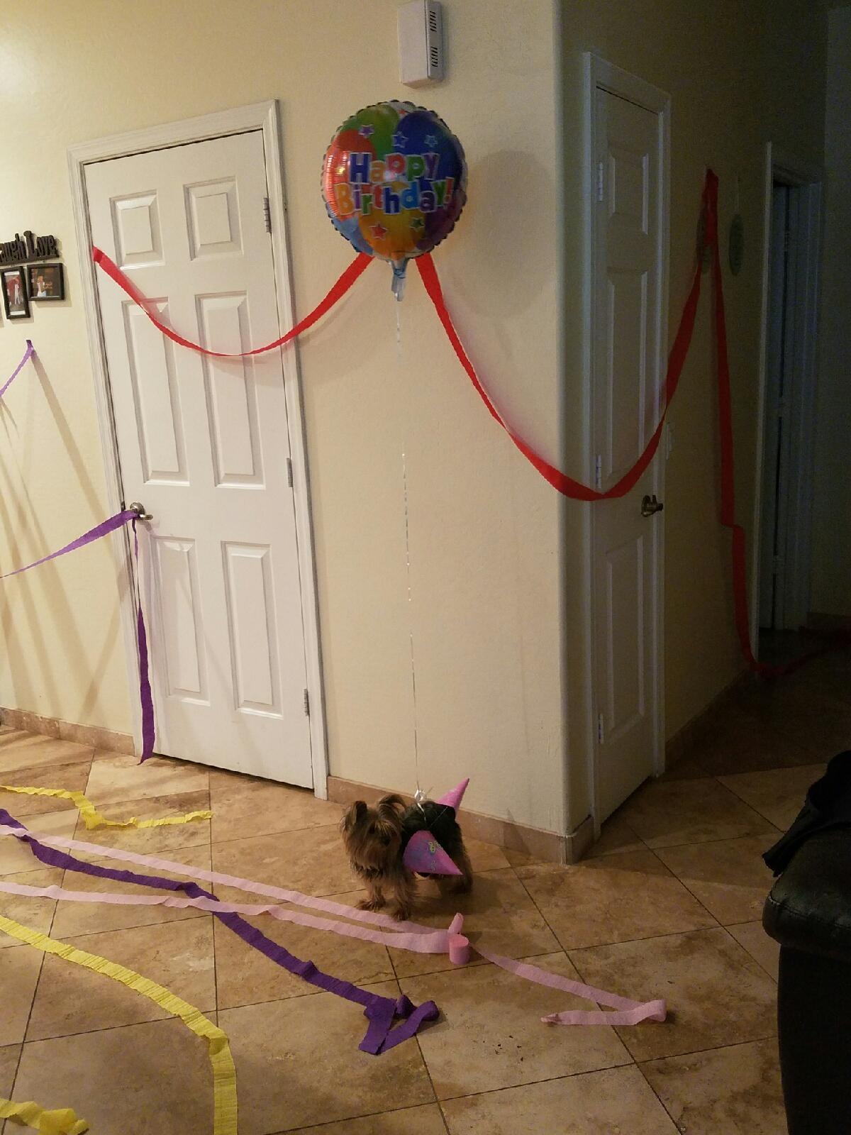 When no one shows up to your birthday party - meme