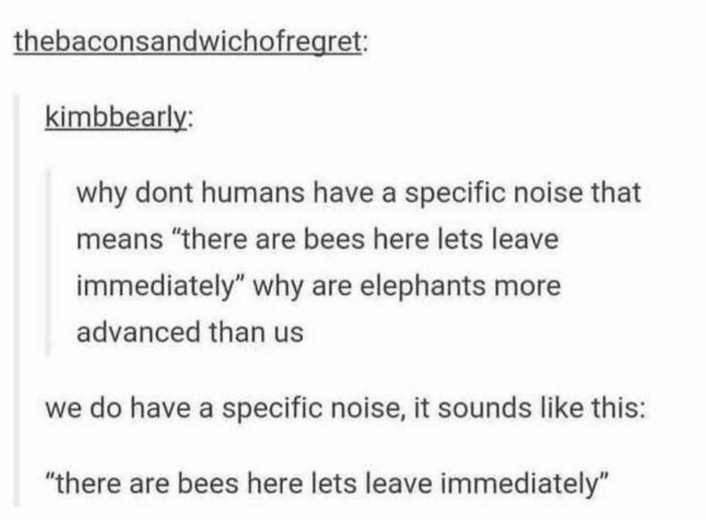 Human language - meme