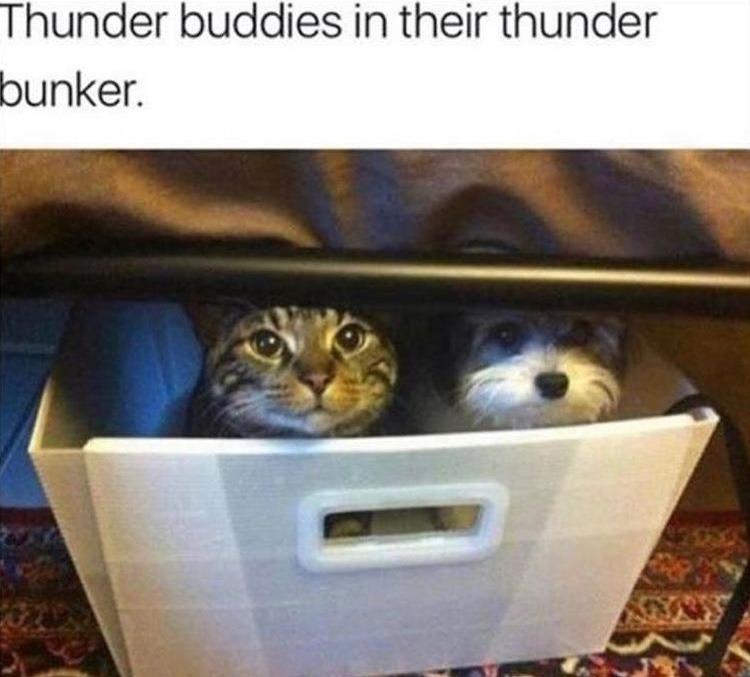 thunder and fireworks bunker - meme