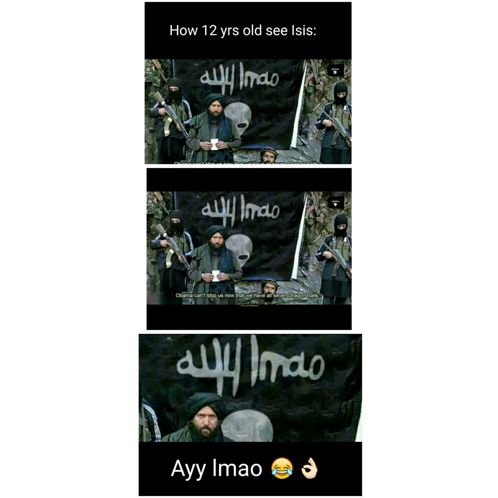 'Dem terrorists - meme