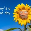 gud day
