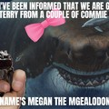 I saw that one meme about Edward the killer whale, op asked for us to pick a sea animal to protect terry, so here it is, say hi to megan