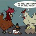 pato y gallina