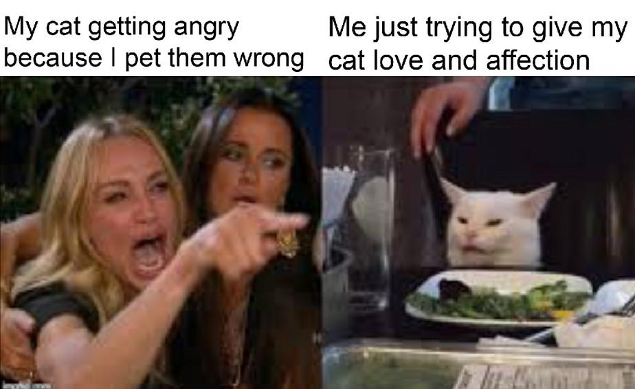 Whiny cat - meme