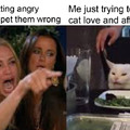 Whiny cat