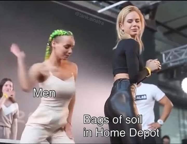 Insert title? Insert something. - meme