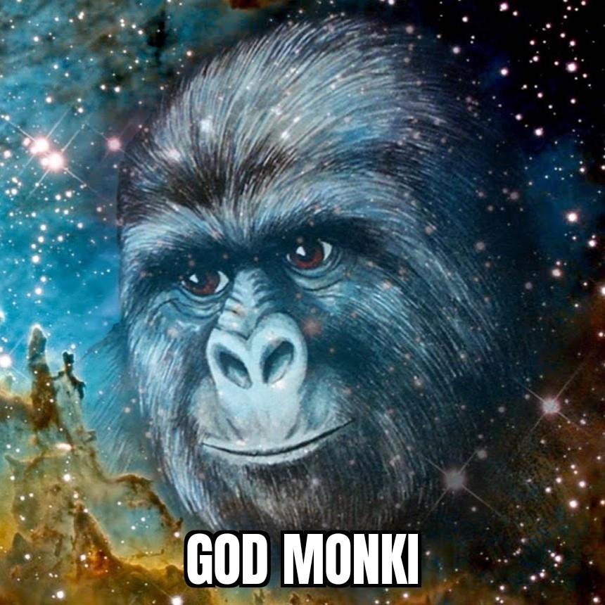 Monki - meme