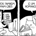 Kkkkkkk. BolsoMITO bem q podia proibir gatos no brasil.