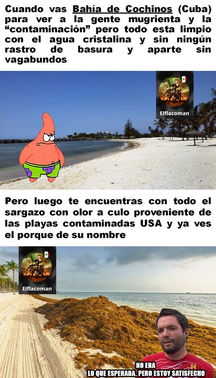 El sargazo también ataca las playas de Cancun y Veracruz con su horrible olor a obo :yaoming: - meme