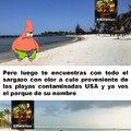 El sargazo también ataca las playas de Cancun y Veracruz con su horrible olor a obo :yaoming: