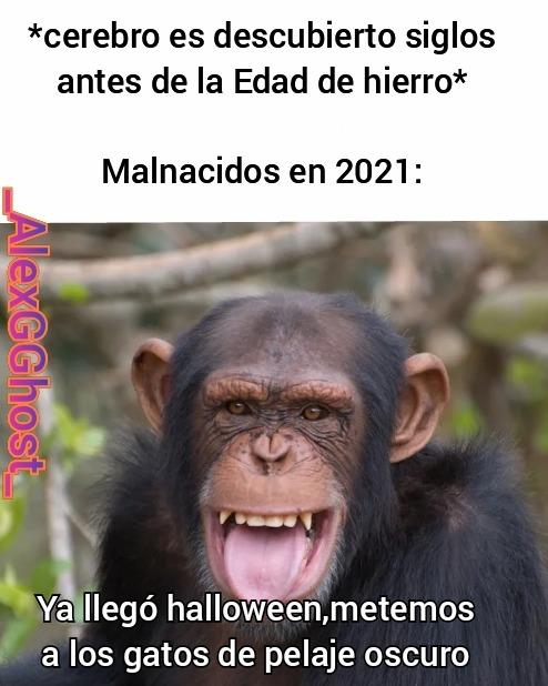 Les deseo felíz Halloween a todos - meme