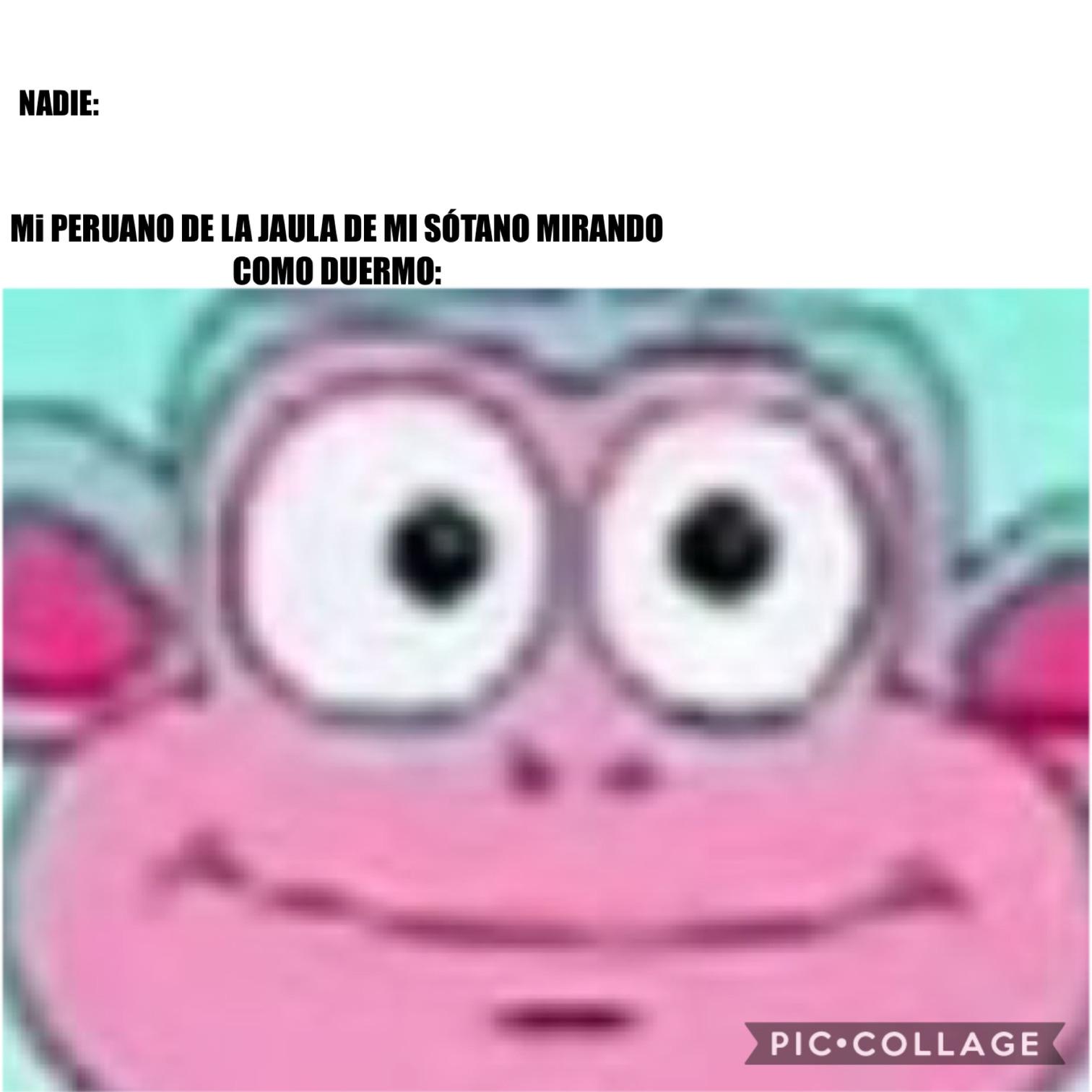 Que miedo los peruanos [Susto] - meme