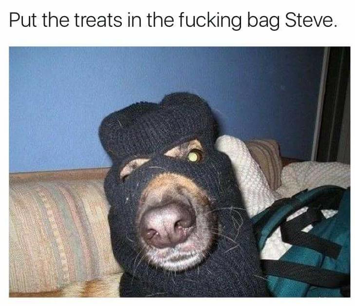 Fuck you Steve - meme