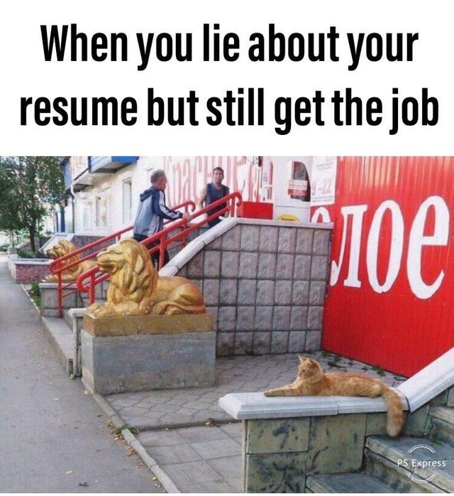 When you lie about your resume bu still get the job - meme