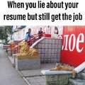 When you lie about your resume bu still get the job