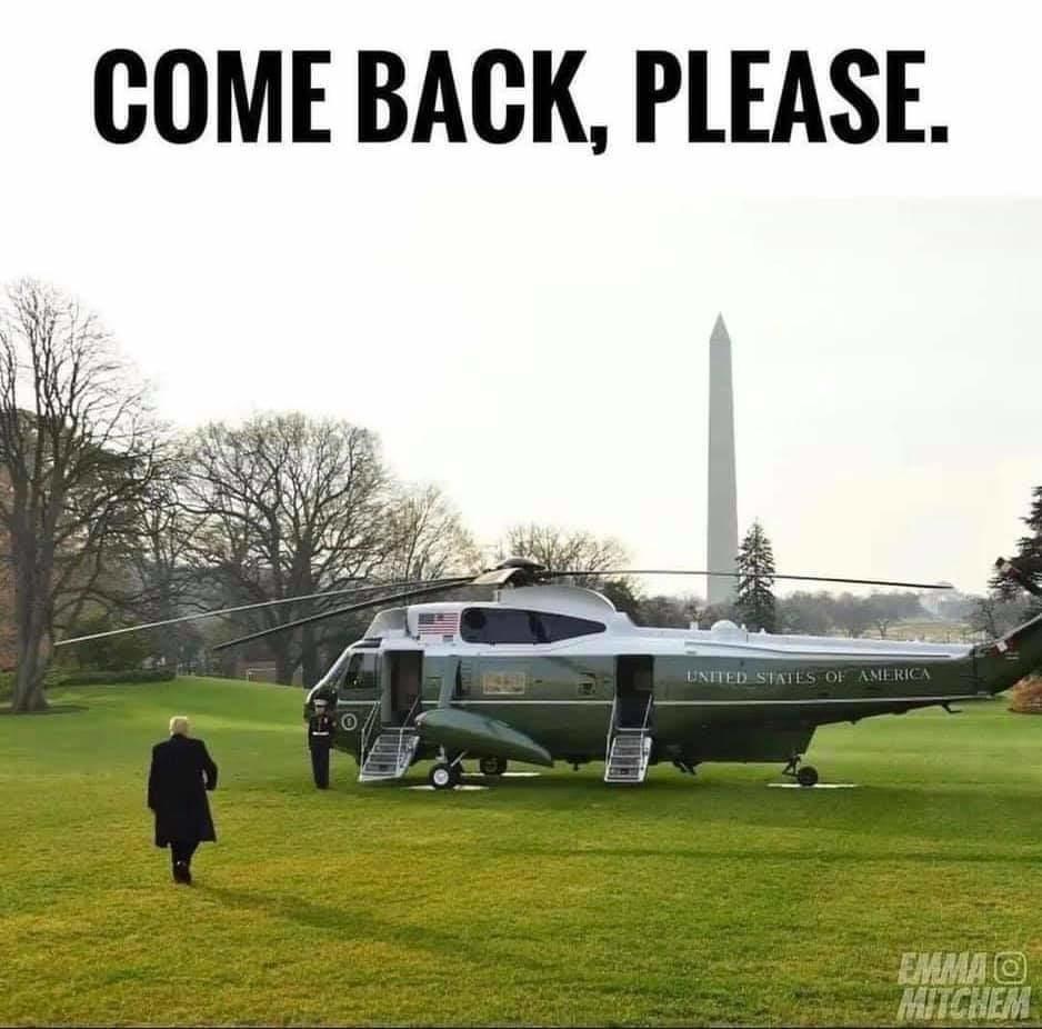 Come Back, Please - meme