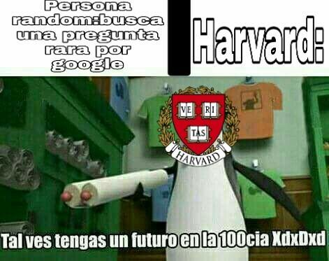 Tipicos memes de harvard