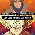Trop de meme sur Goku.... Place à vegeta mtn