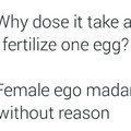 Female ego