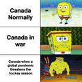 Canada be like