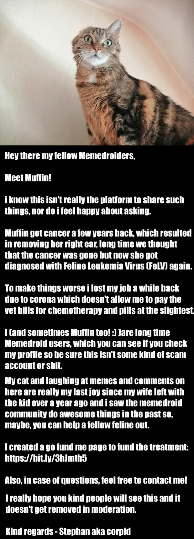 PLEASE save Muffin! - meme