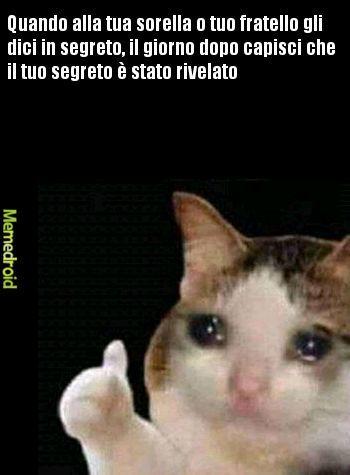 CHE DUE MARONI - meme