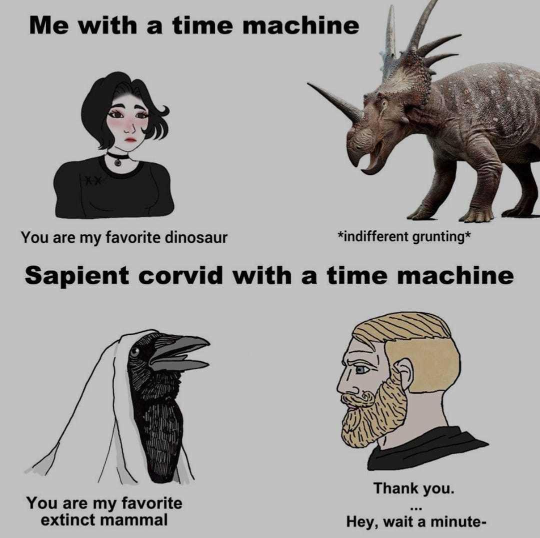 Reverse (btw le corbeau  est bien dessinée) - meme