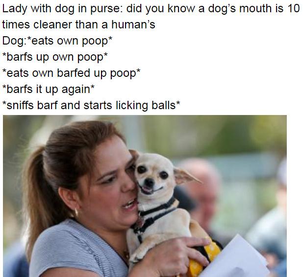 love dogs tho - meme
