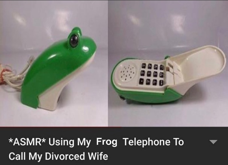 she may have taken the house but I still got the frog phone - meme