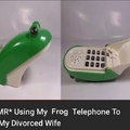 she may have taken the house but I still got the frog phone