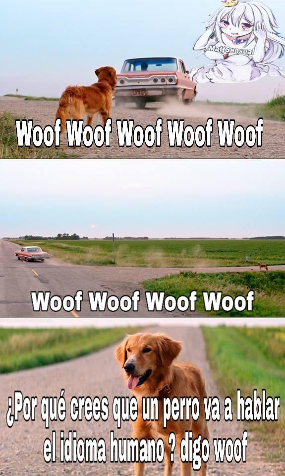 El titulo se fue a decir woof - meme