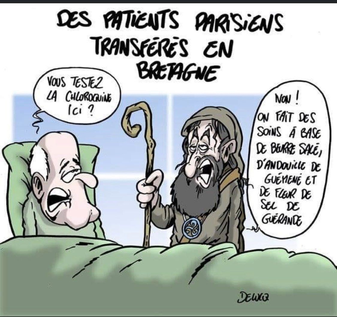 Pardon les bretons en modo - meme