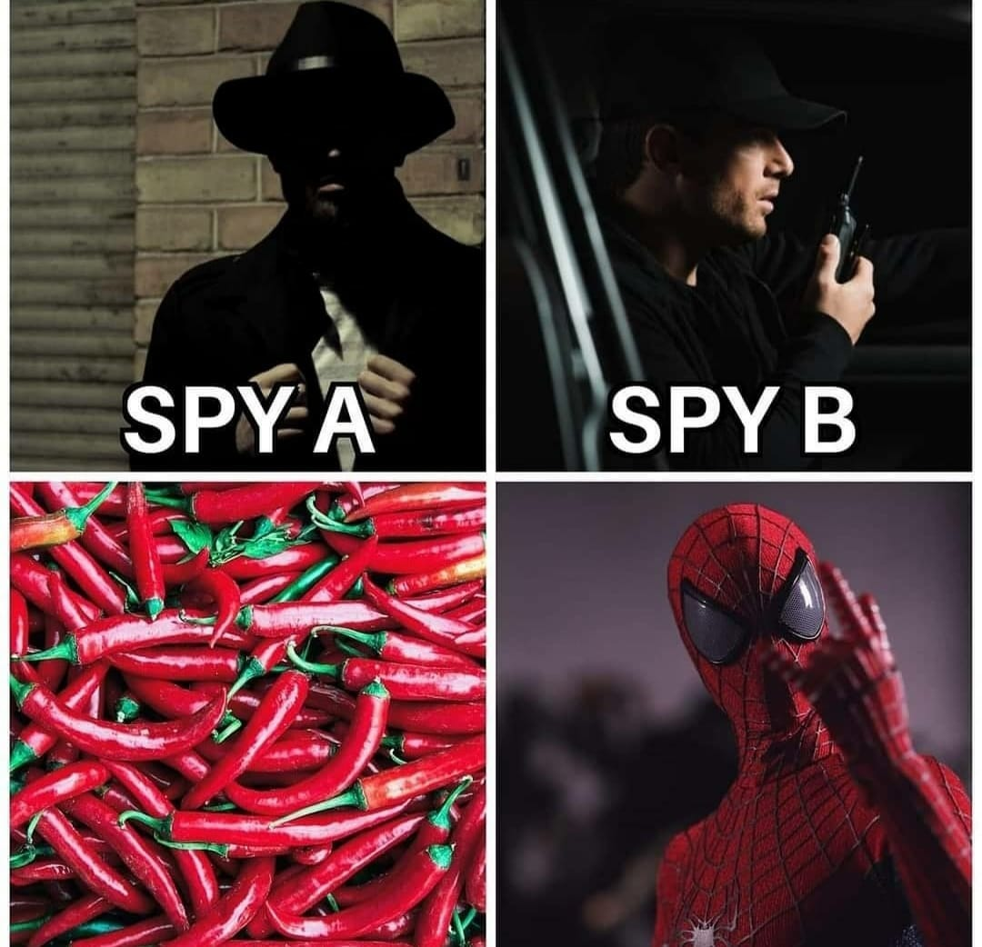 Spiderman spiderman - meme