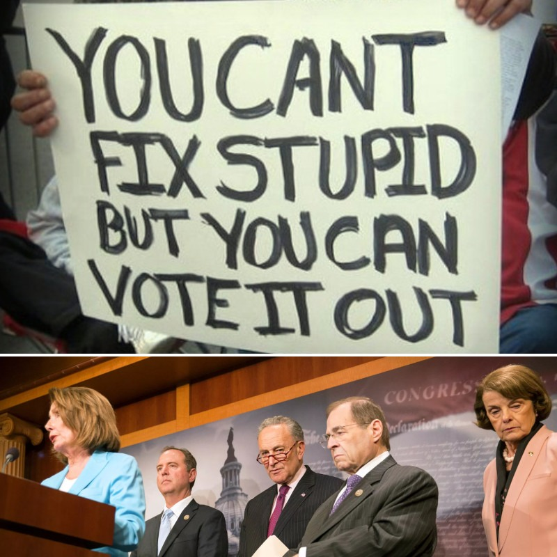 You can't fix stupid - meme
