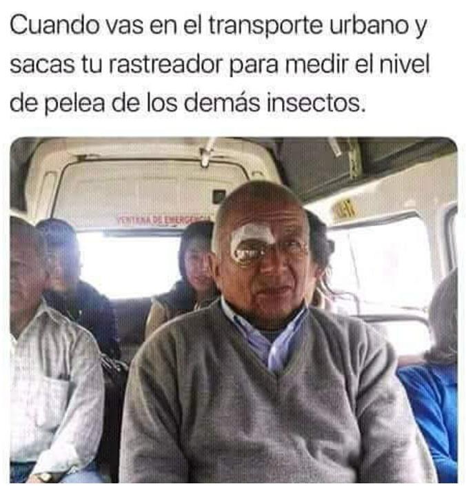 Maldito insecto - meme