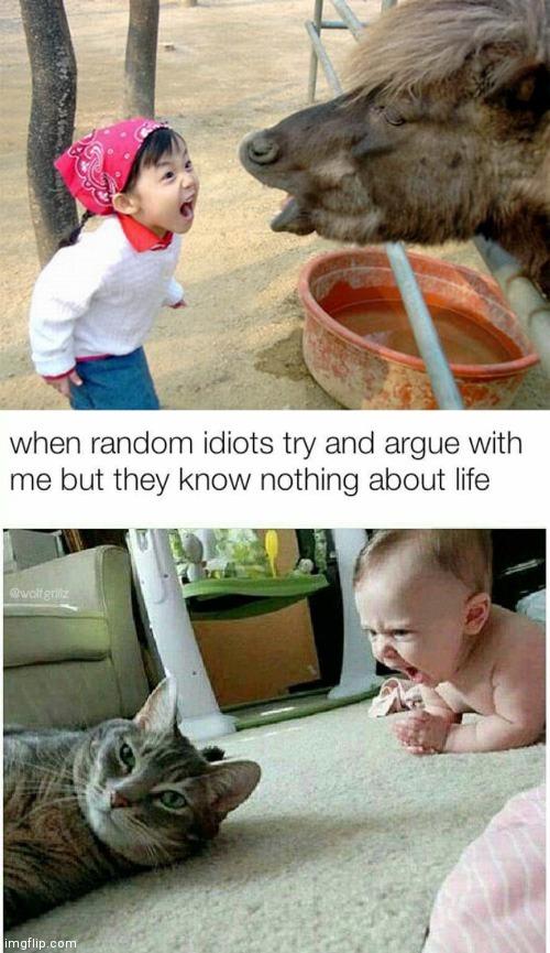 When it finally dawns on me that I am a random idiot. - meme