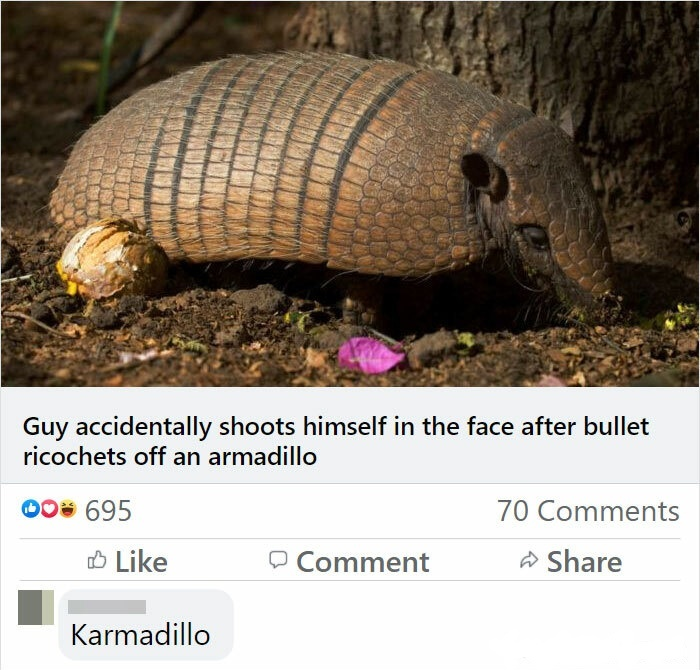 But why would you shoot an armadillo? - meme