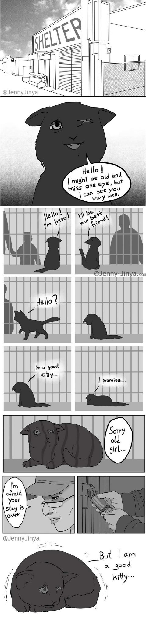 Part 2 of the Sequel to the sad kitty comic from earlier - meme
