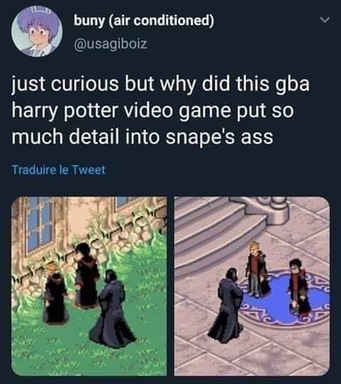 Snape aka Thiccus Totalus - meme