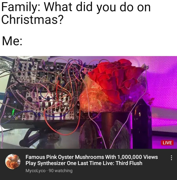 My new jam - meme