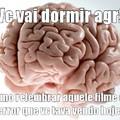 É assim que o cerebro funciona