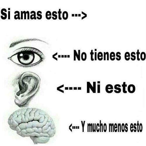 Plantilla¿ >< - meme