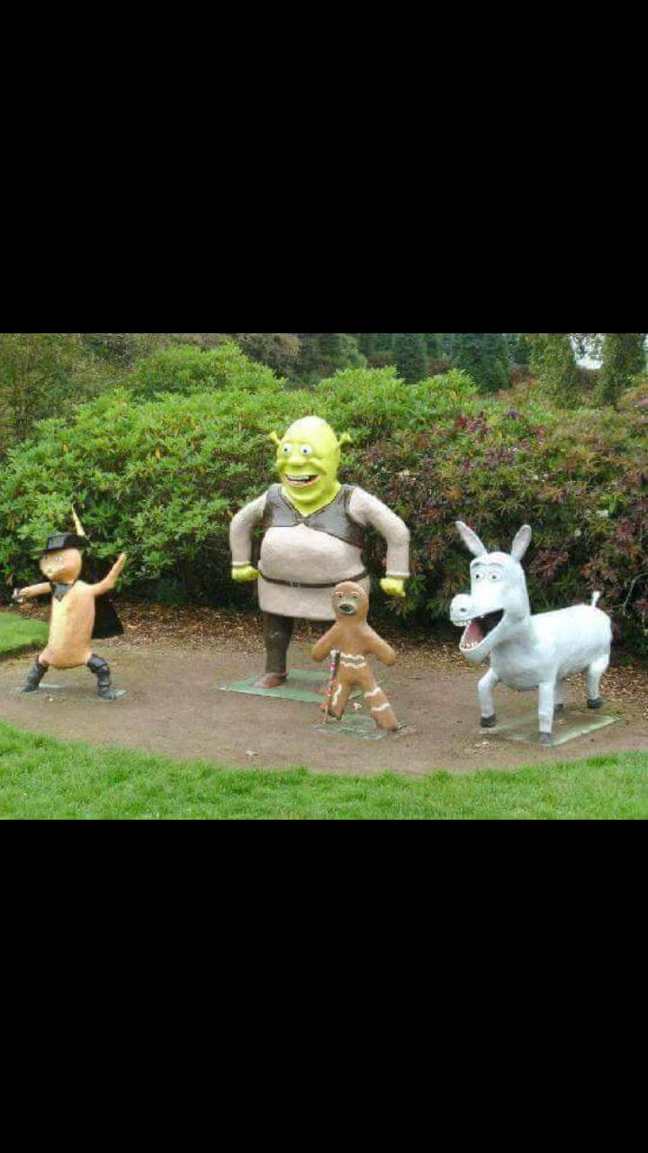 Quand les persos de Shrek ont un peu abusés sur le drogue - meme