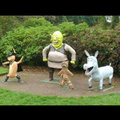Quand les persos de Shrek ont un peu abusés sur le drogue