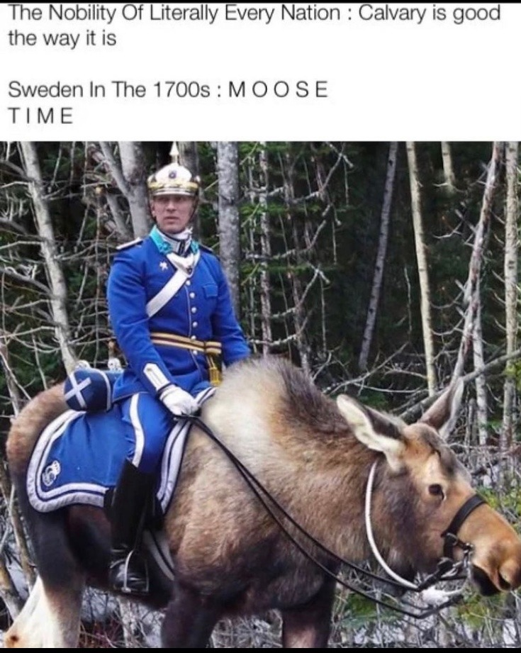 moose time - meme