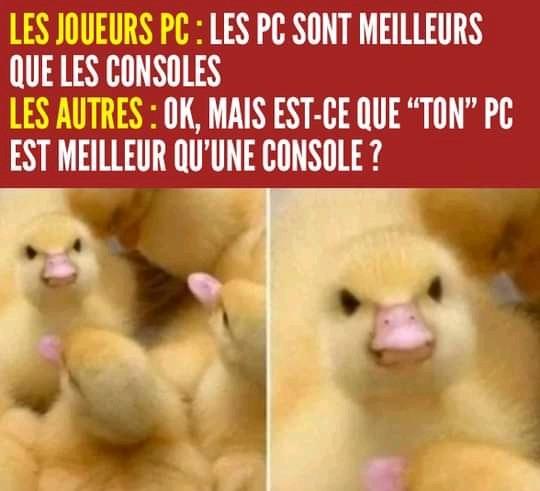 Mignon - meme