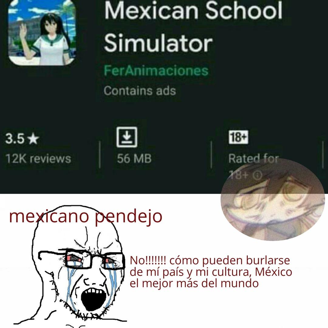 Porque hay tantos mexicanos que se ofenden con cualquier cosa que digan sobre su país - meme