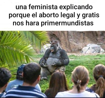Femiburras - meme