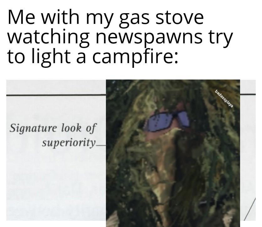 I'm nice in Dayz - meme