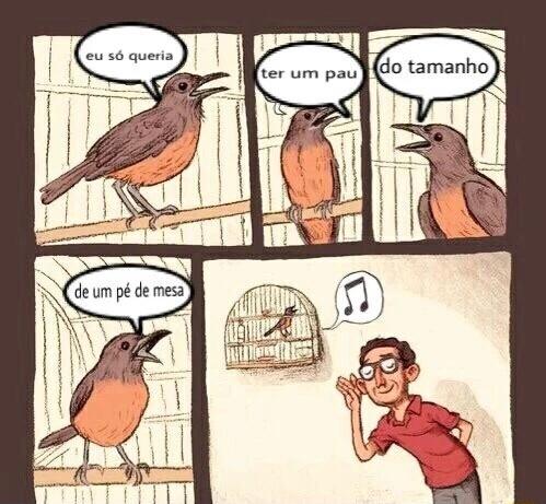 que beleza de canto - meme